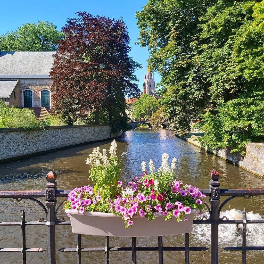 Waterways on sunny days... 📍 Bruge - Belgium 🇧🇪 ~ ~ #ReevesDoTravel #travel #travelblogger #blogger #travelbug #adventure #traveler #instatravel #roadtrip #wanderlust #travelphotography #Eurotrip #Europe #vanlife #vanlifeEurope #travellife #campervan… https://t.co/dsXuEDWX7F https://t.co/dNhEodsQ6L