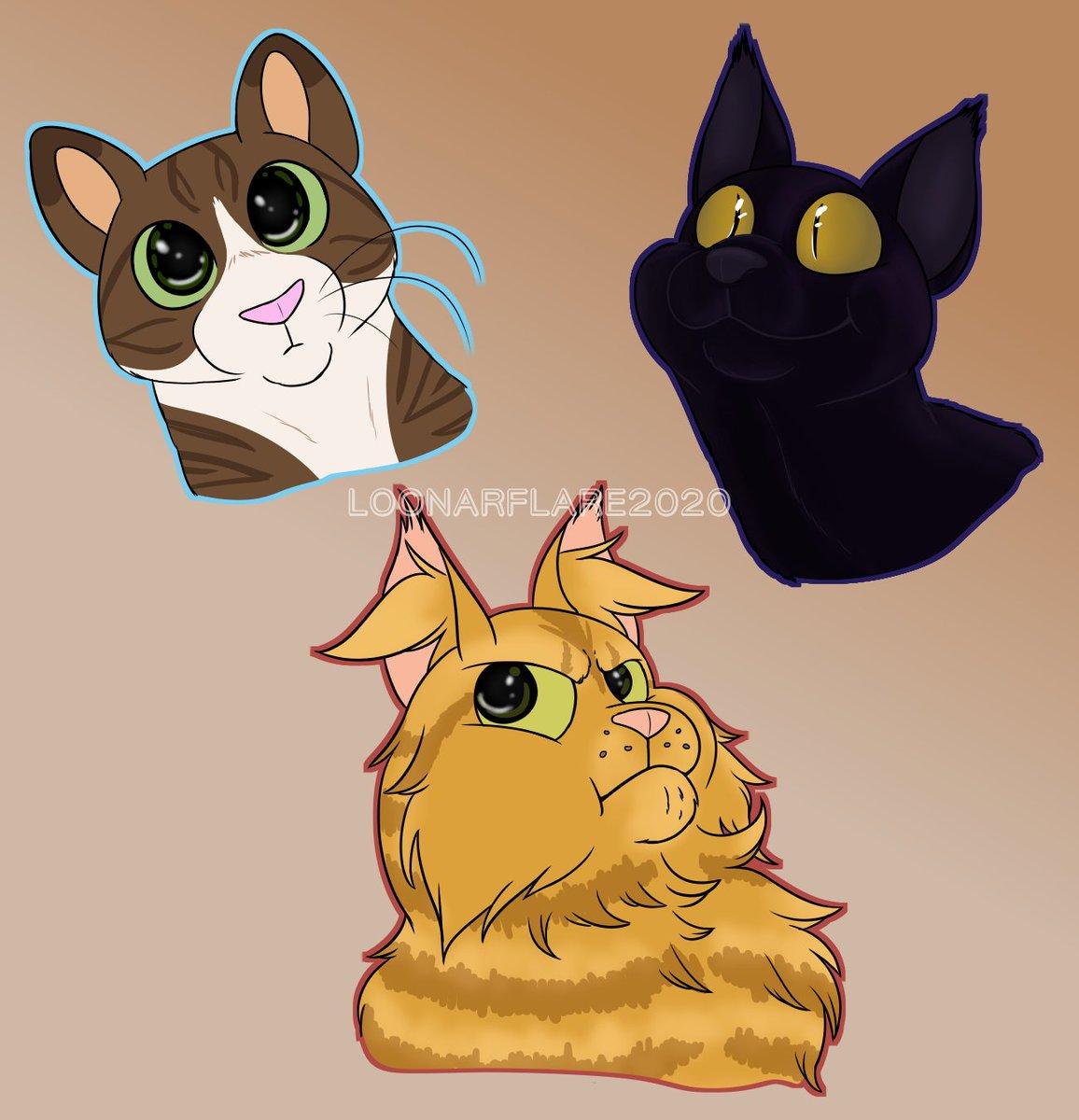 favorite cat twitter headshots // may 2020 @CokeZeroCat @brrbrrblueberry @CatsaneTeto