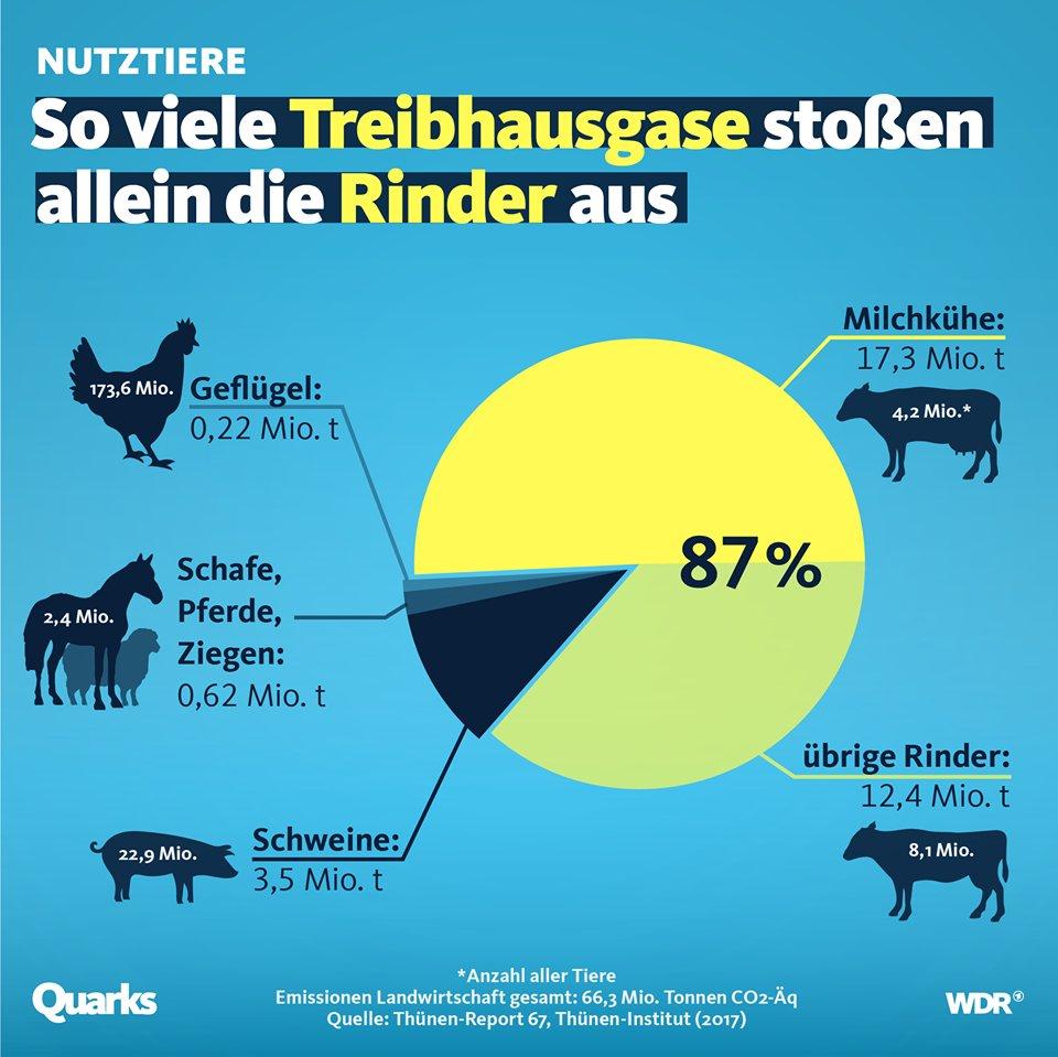 @DiggerRainer Das stimmt leider... Fürs Klima sind die Kühe allerdings das Hauptproblem! Andere Tierarten emittieren deutlich weniger bzw. garkein Methan! 🙄