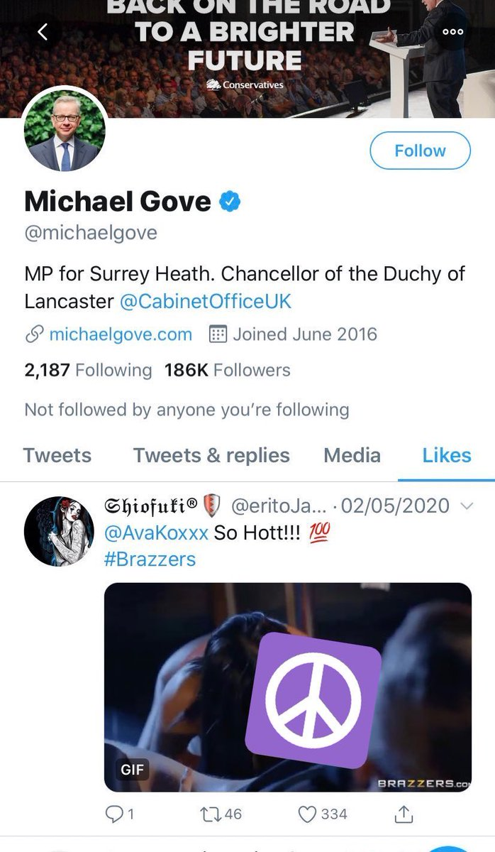 """""""I was not watching pornography on Twitter. I was worried my penis didn't work, so I had to give it a test run. I pressed the like button as I was concerned for my family's welfare. Reasonable people may disagree."""" #Gove"""
