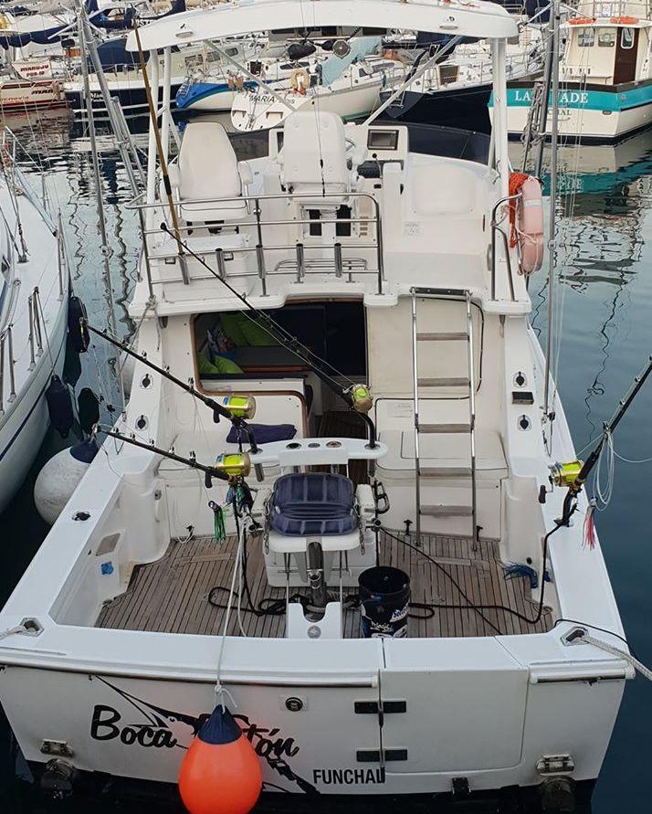 Madeira - Boca Raton released a Blue Marlin (500).