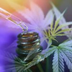 Image for the Tweet beginning: #cannabis #marijuana #weed Inside the