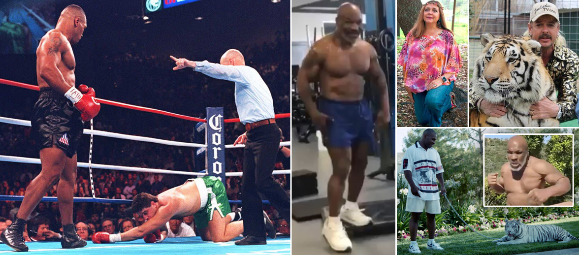 Boston Boxing Promotions want Mike Tyson fight return with Tiger King cast on undercard dailystar.co.uk/sport/boxing/b…