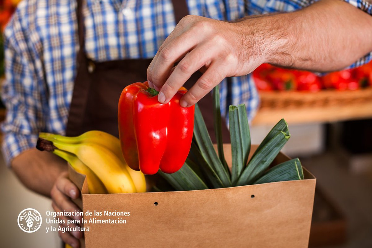 """""""No hay salud si no hay alimentos. Hay que asegurar que la cadena de valor de los alimentos siga operando, pero también hay que asegurar la salud de los trabajadores."""" . Menciona @MaximoTorero . . #COVIDー19pic.twitter.com/4eaDi4KNsg"""