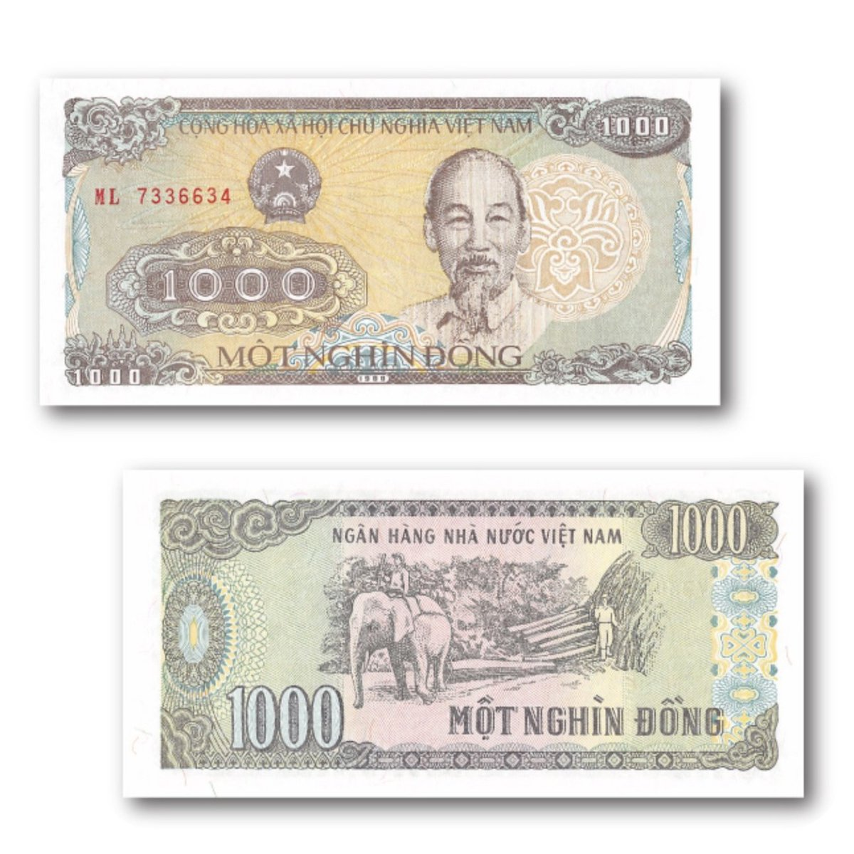Vietnam is a Southeast Asian country with a very unique past. Here we have 1,000 Dong from 1988. On the obverse is a portrait of former leader Ho Chi Minh. On the reverse there is an image of a mahout riding his elephant. https://bit.ly/3cjz33spic.twitter.com/I1eNXmw5Y6