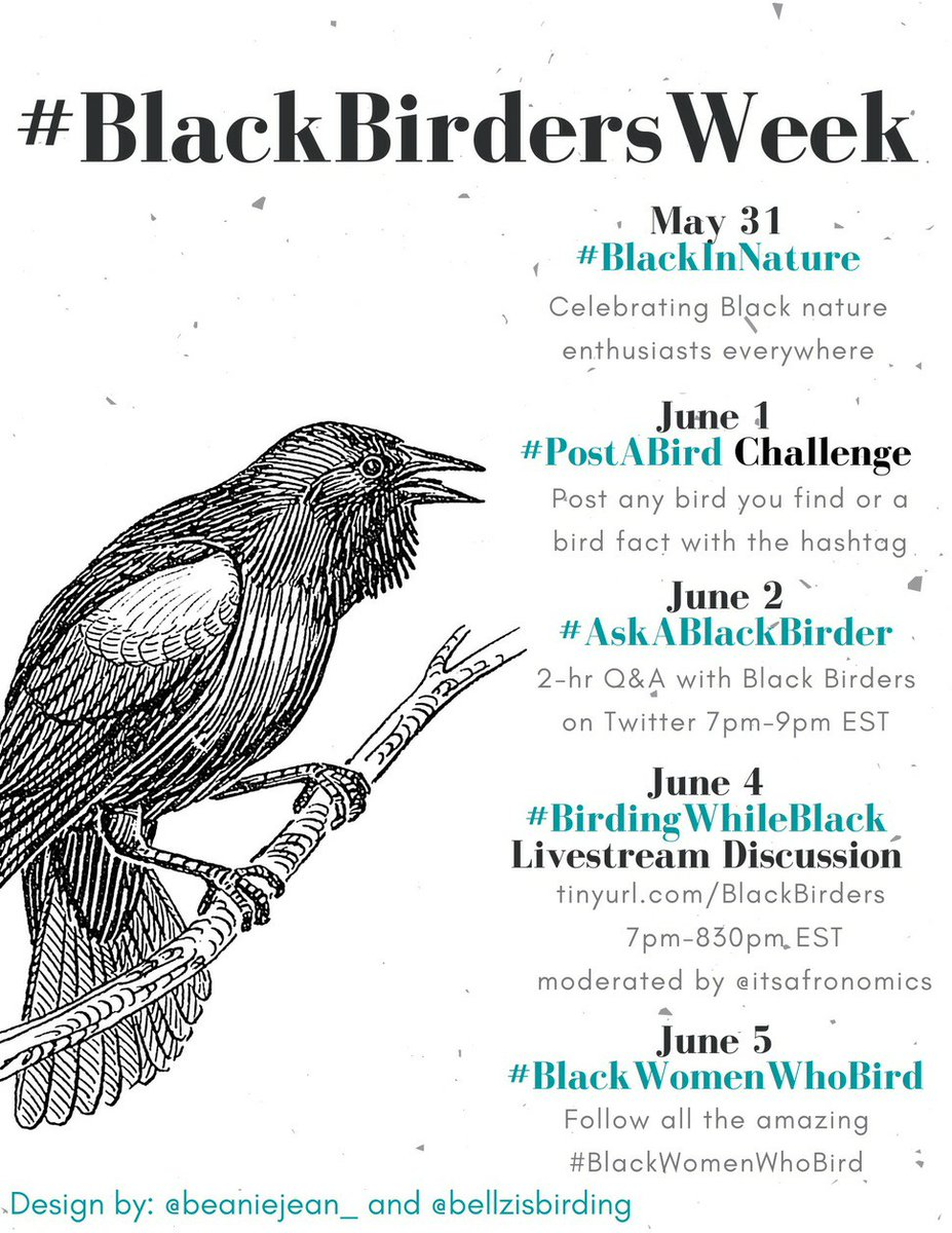 Happy #BlackBirdersWeek! Join one of the events below and get excited about birds!