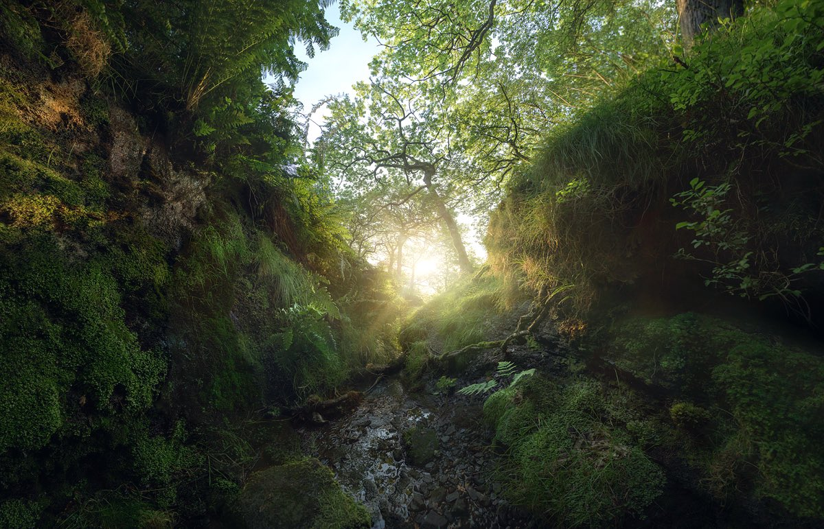 Sunrise, stood in a little ice cold stream in the Peak District a few years ago, at the Western end of the Hope Valley. Posted for those feeling a bit broken. Take care everyone'pic.twitter.com/XHwEfsGgmU
