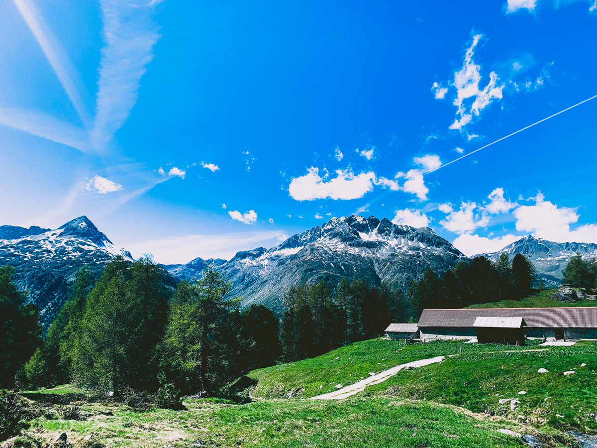 Wir wünschen ein schönes Pfingstwochenende 🌞 Bis bald im Nira Alpina!  #DreamNowTravelLater #IneedSwitzerland #engadinstmoritz #ashanticollection #niraalpina #summerinthealps #corvatsch #engadin #designhotel #graubünden https://t.co/gQMMW48OW4
