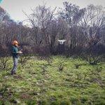 Image for the Tweet beginning: At Namadgi National Park setting