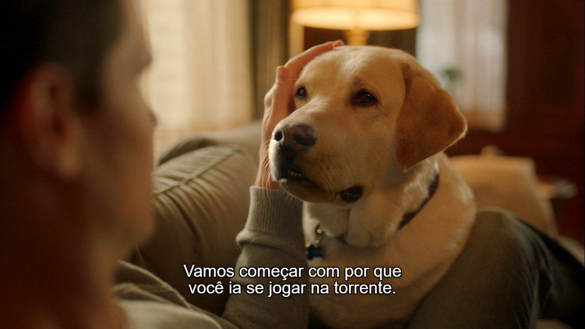 o cachorro falando KKKKKKKK #UploadTV. #Upload1x02.pic.twitter.com/Gc1cO3LfRd