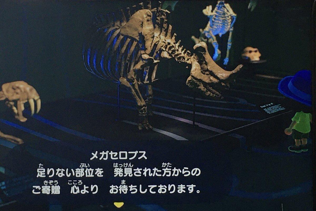 寄贈 あつ 森 できない 化石