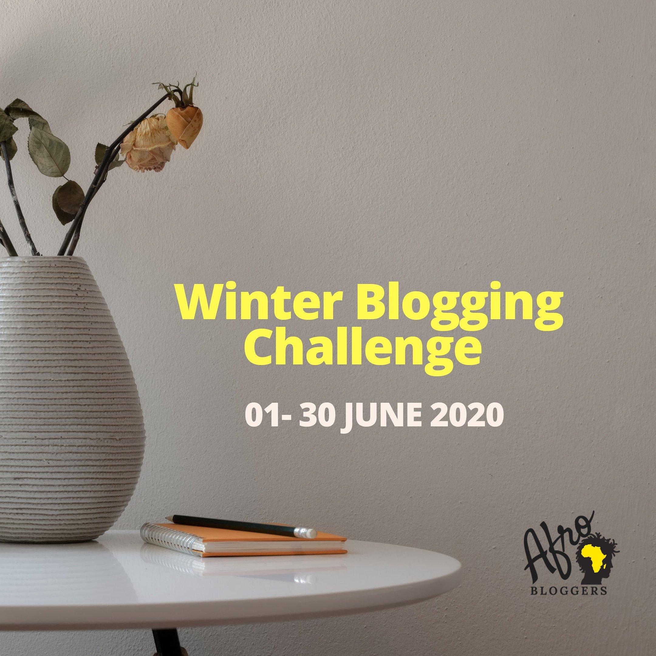 Afrobloggers WinterABC