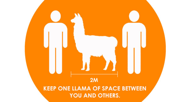 ➡️Keep one llama of space between you and others⬅️ Our friends at @ECHOSPACE4 have some tips on how to make sure your #workspace is safe and fits new requirements💪   #fitout #officespace #design #constructionindustry #digitalization #constructionmanagement