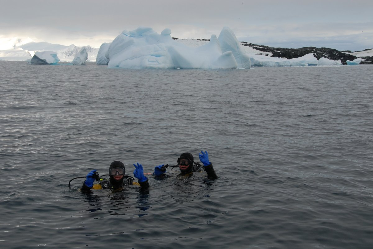 Want to hear about my face to face with a leopard seal #scuba diving in #Antarctica? https://t.co/DWglMW8DSw.  Listen to the entire Culture #podcast episode: https://t.co/RXRQOlWl6E https://t.co/5BP4pXHDoa