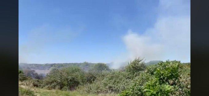 Duinbrand gaande tussen Ter Heijde en Kijkduin. Is opgeschaald naar zeer grote brand. https://t.co/rEMfm93eou