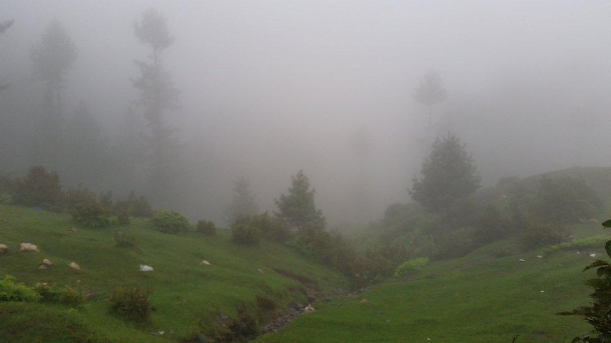 Foggy / misty Malam Jabba, KP, Pakistan   So refreshing site, difficult to explain in words  #Pakistan #travel #tourism @pid_gov #mountain #trekking #rain #Cloud https://t.co/YNmfvKn0cu
