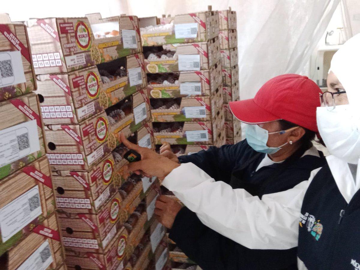 #Imbabura | #Agrocalidad brinda su servicio para que las exportaciones no se detengan, se realiza la inspección fitosanitaria de tomate de árbol en el cantón Pimampiro, parroquia Pimampiro con destino Estados Unidos  *#CertificamosCalidad* *#ElAgroNoSeDetiene*pic.twitter.com/XyTn9rViJF