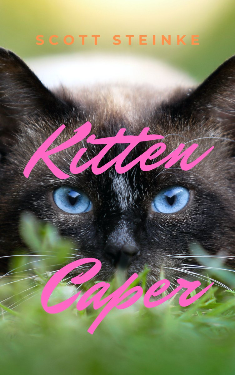 ⭐️⭐️⭐️⭐️⭐️Vivid descriptions of life in a charming, small town along with uncanny insight into a cats mind make this short story a joy to read-Amazon review. #Kitten Caper is #free on #KindleUnlimited amazon.com/dp/B08928YQ4F #cozymystery #caturday #amwriting #catstagram