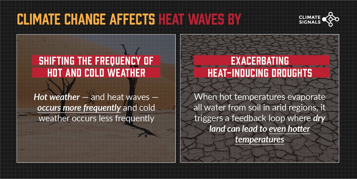 Last week, a historic heat wave engulfed the Northeast, breaking several temperature records. These kind of heat events are becoming more common and intense due to #climatechange. bit.ly/3cfVXJ4 via @capitalweather