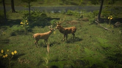 Proekologiczny symulator przyrodniczy #NaturalInstincts, którego producentem jest @TheDreamStorm, a wydawcą @GamesOperators, potrzebuje obecnie wsparcia na #Kickstarter.ze.  https://crouschynca.blogspot.com/2020/05/natural-instincts-kickstarterowa.html…  #indiegame #gamenews #nature pic.twitter.com/dqP1U3G9MO