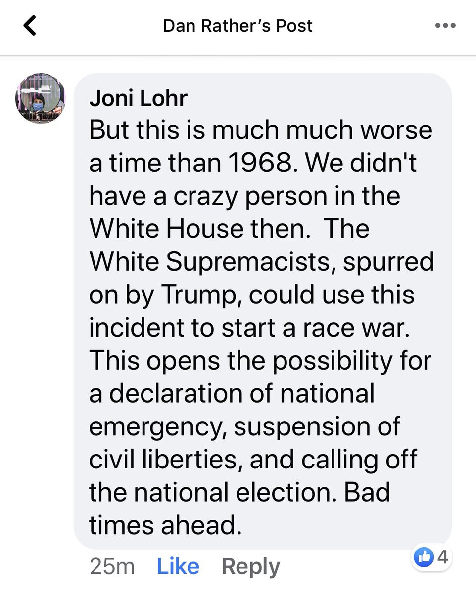 """From a post where someone said this feels like 1968... this egos what others have been saying is Trumps plan to stay in office. Cause so much chaos to give an excuse to cancel the elections. His """"vicious dogs"""" statement was intentional. pic.twitter.com/YALzGJwm1q"""