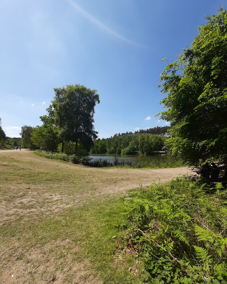 Lovely walk in #CannockChase  Extremely hot today. #walk https://t.co/ZiC7zFUzuT