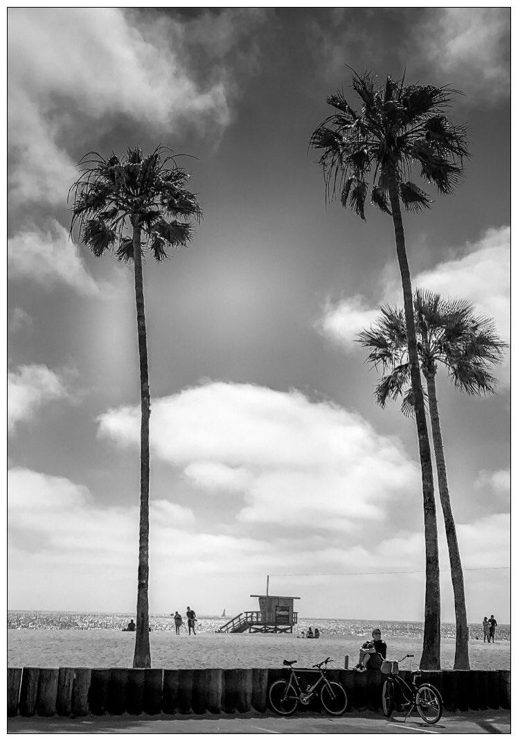 Venice Beach... . . . . #thephotosociety #streetsanfrontieres #eyephotomagazine #shotonmoment #spicollective #spjstreets #streetphotographyjournal #streetphotographyworldwide #streetshared #citykillerz #urbanromantix #la  #la_shooters #richardgreenla #venicebeach #la #bwpic.twitter.com/NFmeOKWBOM