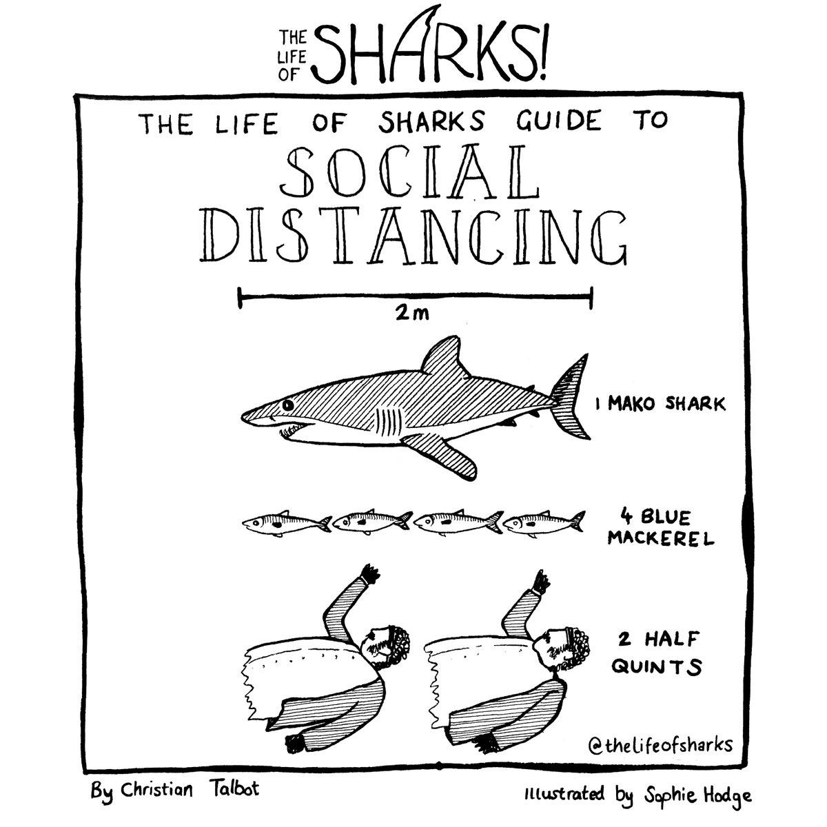 Farewell and adieu.   #SocialDistancing #sharks #jaws https://t.co/QiKJUn4L6j
