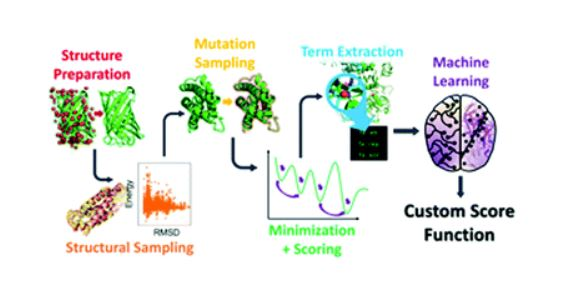 Have you read Rosetta custom score functions accurately predict ΔΔG of mutations at protein–protein interfaces using machine learning? Its the latest Comm from John J. Ferrie & E. James Petersson et al. @PennChemistry 👉🔗 ow.ly/GINV50zSmID