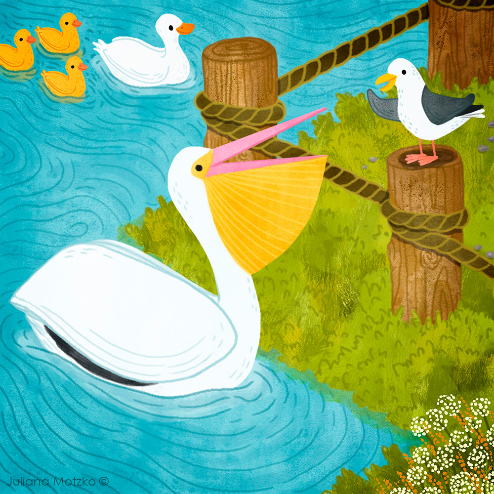 Some good friends catching up. ❤️ #CatchingUp #Friends #Animals #cute #pelican #seagull #duck #ducklings #characterdesign #kidlitart #kidlitartist #childrenillustration #kidspublishing #childrenspublishing #illustration #illustrator #JulianaMotzko