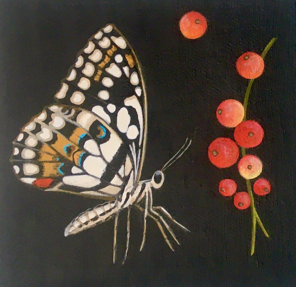 Papilio demoleus (new painting 10x10cm) #art #arte #artist #artwork #fineart #figurativeart #painting #sarahgoldbart #artoftheday #picoftheday #contemporaryart #contemporaryartist #modernart #artcollector #artcollection #nature #naturelovers #artlovers #butterfly #papiliodemoleus
