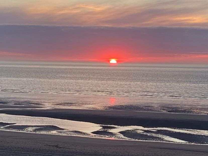 Coxyde pas avant le 15 juin. Même le soleil ne veut pas voir ça  #Belgique https://t.co/oVcEACNf4v