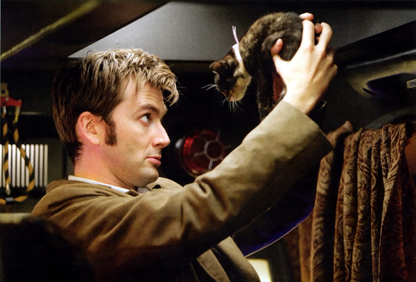 David Tennant holding kittens gives me the serotonin boost I currently need in life. #NewNewYork