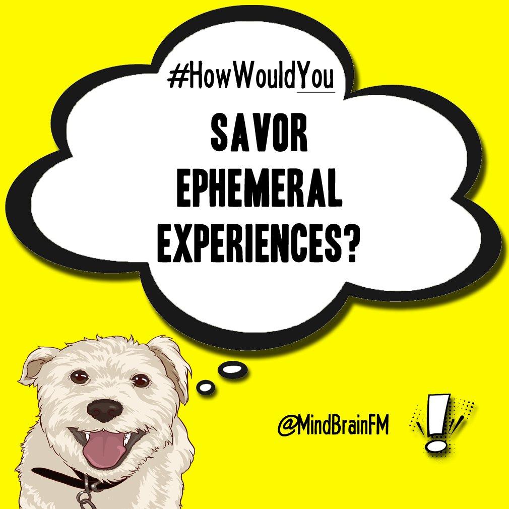 #HowWouldYou savor ephemeral experiences? #positivity #imaginationpic.twitter.com/oXH6GtQNAm