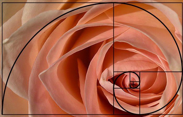 Simplicity is the ultimate sophistication. –Leonardo da Vinci #sacredgeometry<br>http://pic.twitter.com/75MmwJoWYi