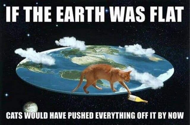 Anybody who believes in a #FlatEarth should get a cat. This would be a pretty good GoFundMe!