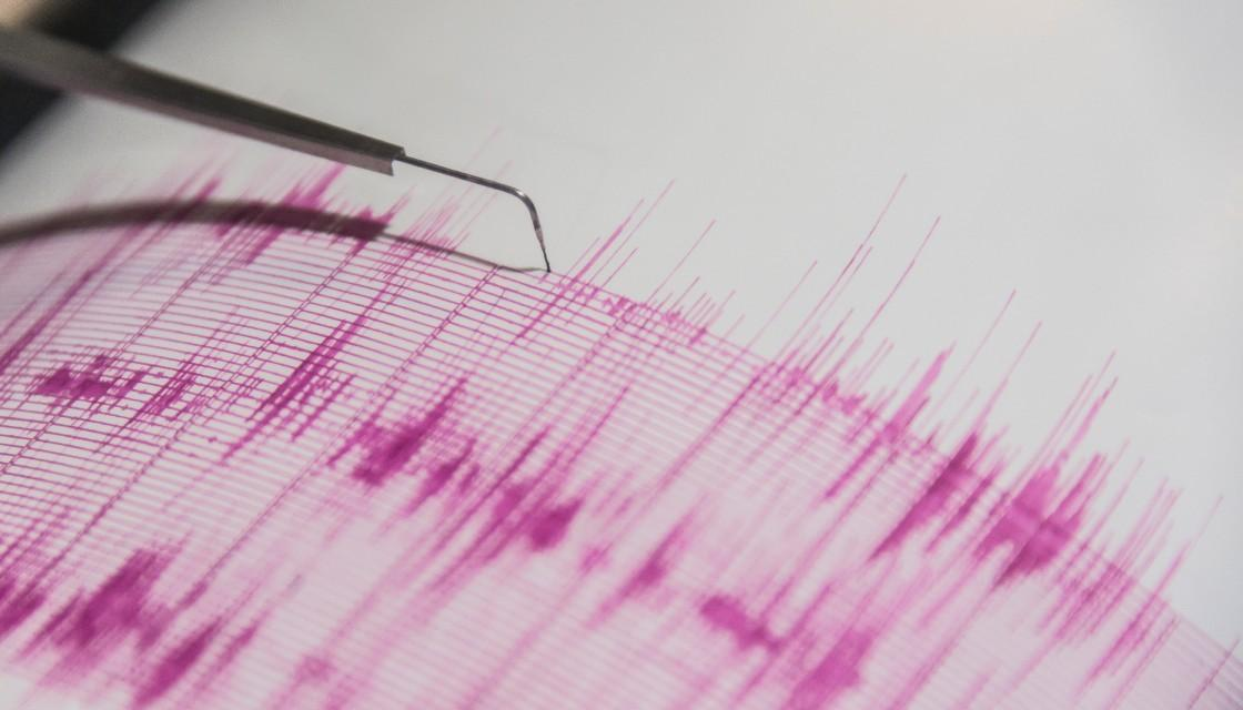 #BREAKING: Did you feel it? Another earthquake rattles North Island https://t.co/kFVfY63Mxj https://t.co/x6JqqGVkJr