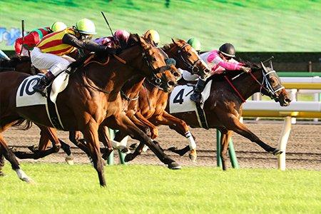 【投票】クセが強い競走馬の名前ランキング、1位は「キンタマーニ」「キンタマーニ」はバリ島北部にある小さな村が由来という。2位「ジーカップダイスキ」、3位「ネコパンチ」となった。