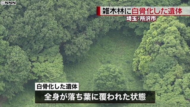 【身元確認へ】埼玉・所沢市の雑木林に白骨化した遺体近所の男性が「人の骨がある」と通報。現場は『となりのトトロ』の舞台の一つになったといわれ、「トトロの森」として親しまれている。