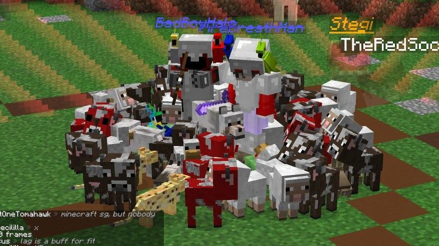 I don't think Minecraft Ultimate had enough pets :(