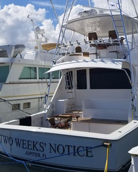 Charleston, SC - Two Weeks Notice released 2 Blue Marlin.