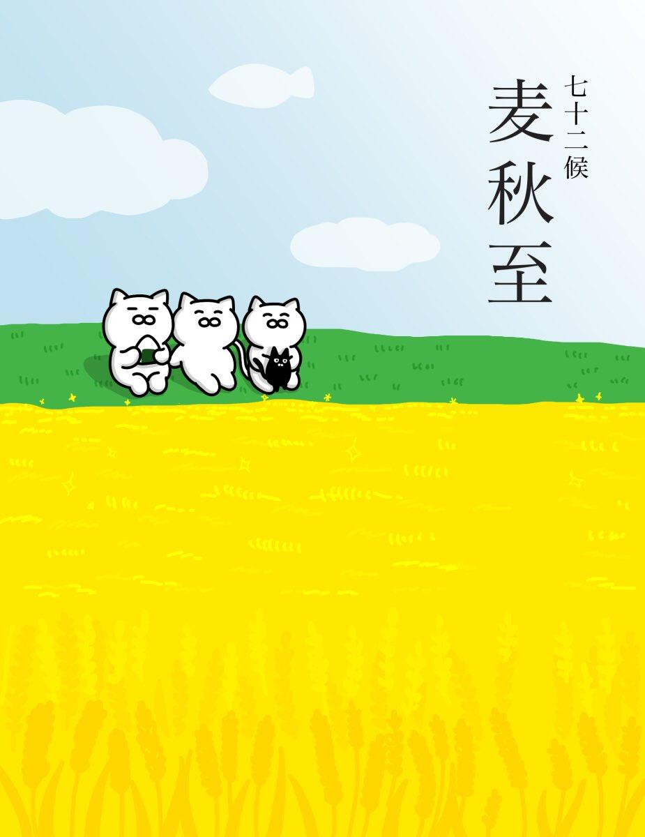 【麦秋至】(むぎのときいたる)麦の芽、麦踏み、青麦の時期を通り過ぎ、麦は収穫の時期を迎えます。七十二候のひとつで二十四節気の小満の末候にあたる。5月31日~6月4日ごろ。#七十二候