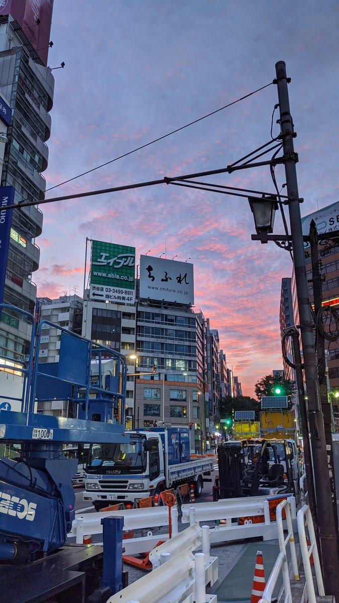 渋谷の工事見に行ったんですが、宮益坂の朝焼けがきれいでしたね〜〜🐈