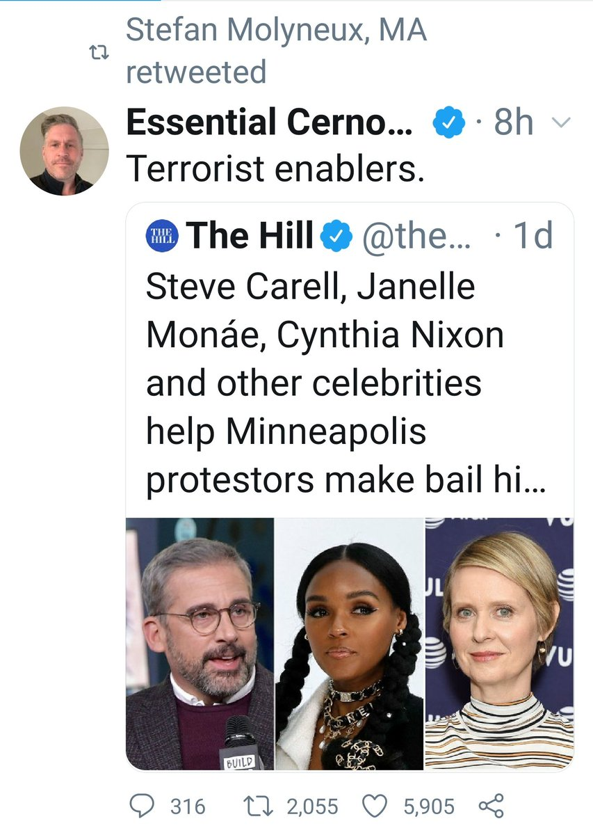 The cops are the real victims here, and paying protesters bail is terrorism - literally the leading minds of the Mens Rights Movement