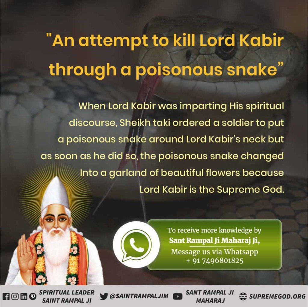 #52_Cruelities_On_GodKabir tempted to let the dead cow alive  Once king sikander lodhi of Delhi killed a pregnant cow with his sword. Then the king said, kabir, if you are a god, you will make this cow alive. Saheb kabir blessed with death cow pic.twitter.com/XxlObEzgJV