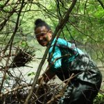 It was once said to me that I go outside too much...I thought, what does going outside too much even mean?  #BlackInNature #BlackBirdersWeek #BlackLivesMatter #Ecology #BlackandSTEM  @BlackAFinSTEM  Here I am installing a beaver dam flow device
