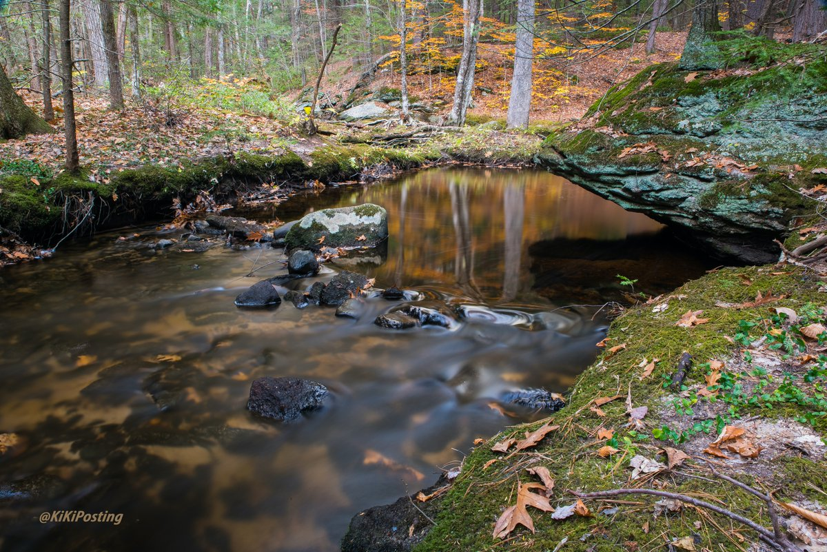 Nature. It brings peace. #photo #photooftheday  #photography #landscape #NaturePhotography #nature #landscapephotography  #nikonphotography #Riot2020 #riots2020  #pictures #picoftheday #NewHampshire #NikonD850 #water #GeorgeFloydProtests #protests2020 #georgesfloyd https://t.co/3syAfSEMPi
