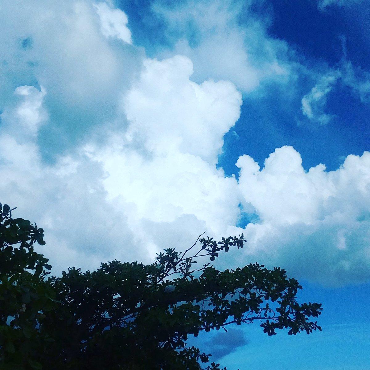 I like the view.. Yudu  <br>http://pic.twitter.com/UnYL62LR04