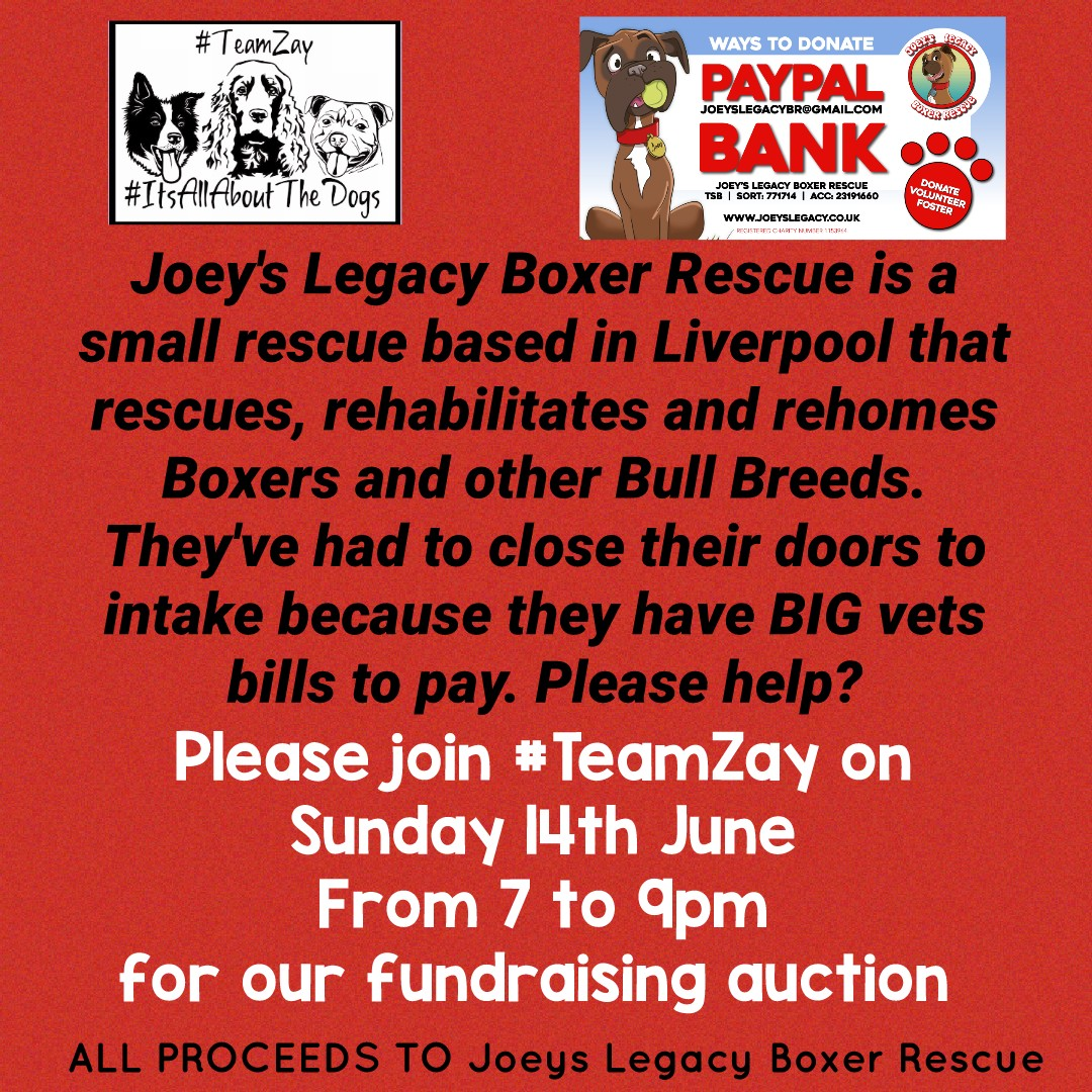 Two weeks today folks, join #TeamZay from 7 to 9pm on Sunday 14th June for our fundraising auction. All proceeds to @legacy_joey to help pay their vets bills. Hope to see you there! #teamworkmakesthedreamwork <br>http://pic.twitter.com/U7eCmdAL0G