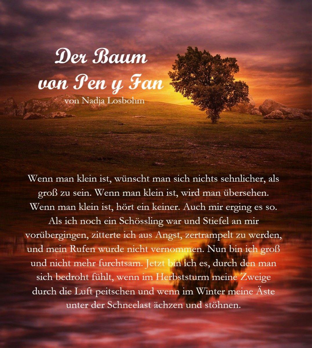 """#bookquote """"Chwedlau Tywyll - Dunkle #Märchen"""" """"Wenn man klein ist, wünscht man sich nichts sehnlicher, als groß zu sein."""" https://buff.ly/2xANMZH #debk #taschenbuch #thalia #GermanMediaRT #darkfantasy #Lesestoff #wirbleibenzuhause #emotionen #buchblogger #bücherhamsternpic.twitter.com/6PlvtsYGka"""